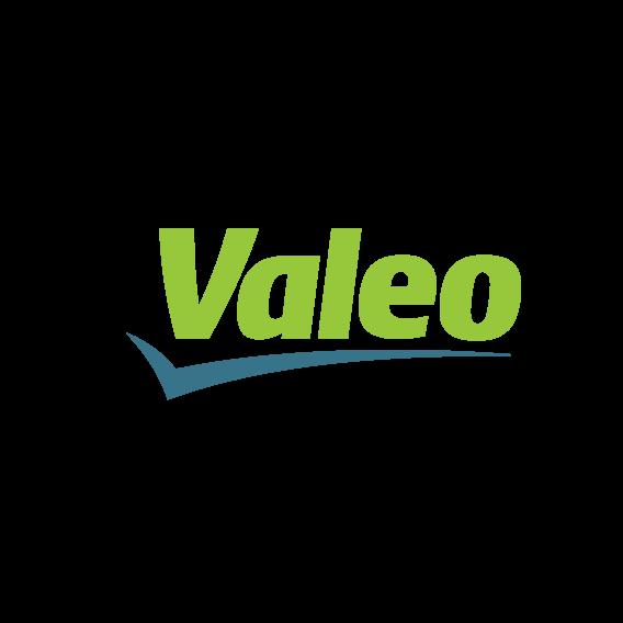 rig-logistic-partner-logo_valeo